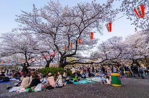 Hanami parties in Ueno Park | © lestaylorphoto via Flickr